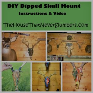 DIY Dipped Deer Skull Mount - This DIY Dipped Deer Skull Mount is an inexpensive alternative if you would like to display your hunting trophies without spending the type of money it costs to have a taxidermist create an entire head and shoulder mount. The project is cheap and simple.