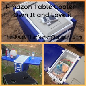 Amazon Table Cooler - This is a product that gets iffy reviews, but I own it and love it! Find out why it works well for my large family.