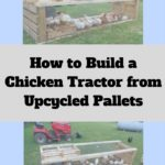 If you've ever kept chickens, I'm sure you know the most difficult task is not keeping them in but keeping predators out. We created this extremely functional chicken tractor using materials we already had on hand.
