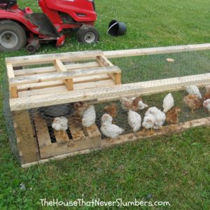 How to Build a Chicken Tractor from Upcycled Pallets - featured