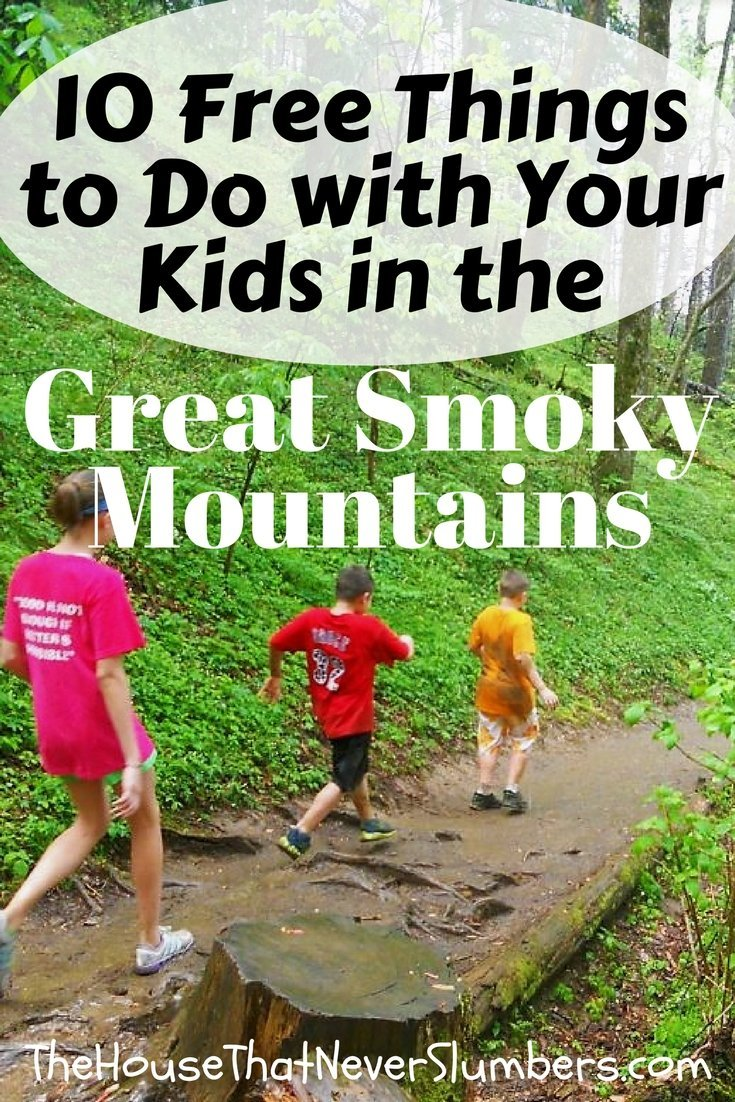 Planning a trip to the Pigeon Forge or Gatlinburg and don't want to spend a fortune on attractions? Check out our favorite free activities! - 10 Free Things to Do with Your Kids in the Great Smoky Mountains - #tennessee #freebie #kidsactivities #hiking #vacation #springbreak