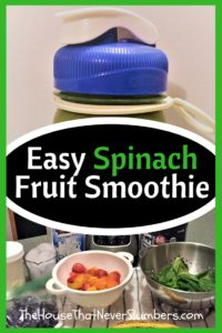 Easy Spinach Fruit Smoothie - Pinterest 1