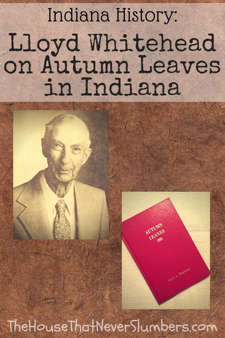 Lloyd Whitehead on Autumn Leaves in Indiana - Portrait #genealogy #familyhistory #ancestry #indianahistory #ruralindiana #modocindiana #hoosierhistory #localhistory #autumn #autumnleaves #fall