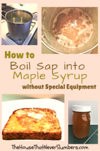 How to Boil Sap into Maple Syrup without Special Equipment - Did you know you can collect and boil sap into maple syrup without special equipment? Click to find easy instructions for boiling maple syrup at home. #maplesyrup #pancakes #homesteading #survival #naturalfoods #naturalsweeteners